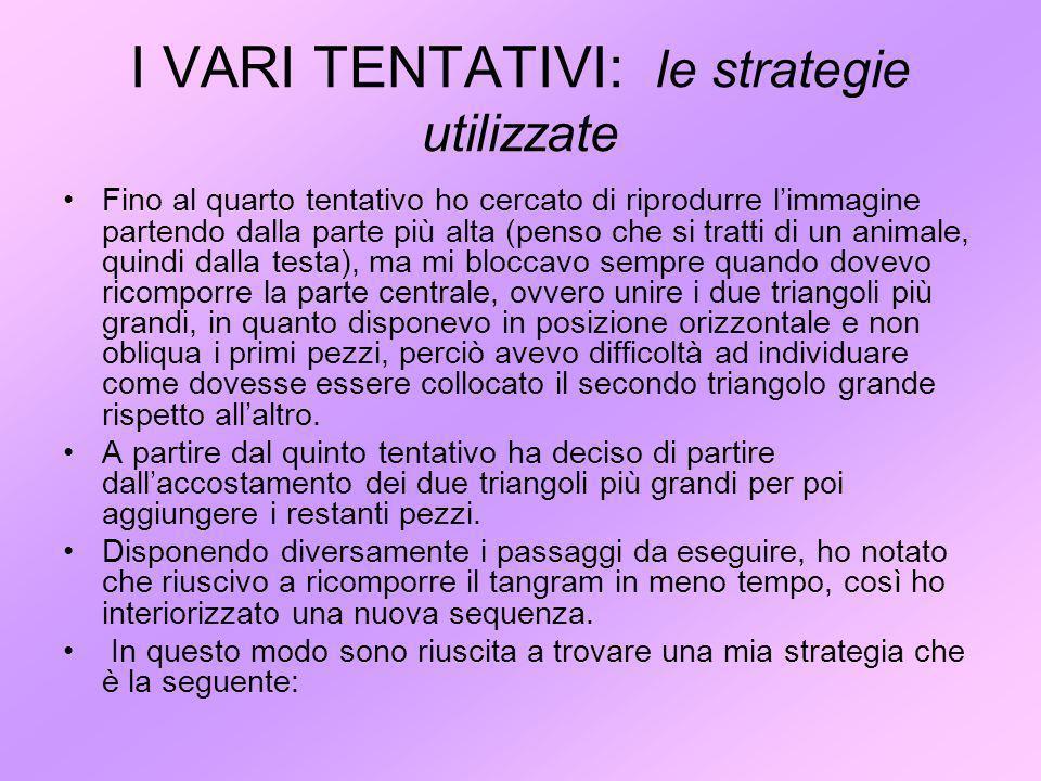 I VARI TENTATIVI: le strategie utilizzate