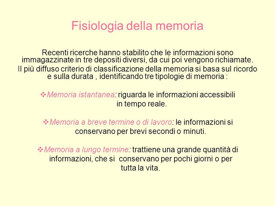 Fisiologia della memoria