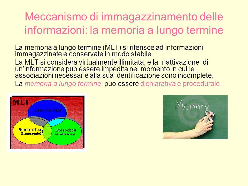 Meccanismo di immagazzinamento delle informazioni: la memoria a lungo termine