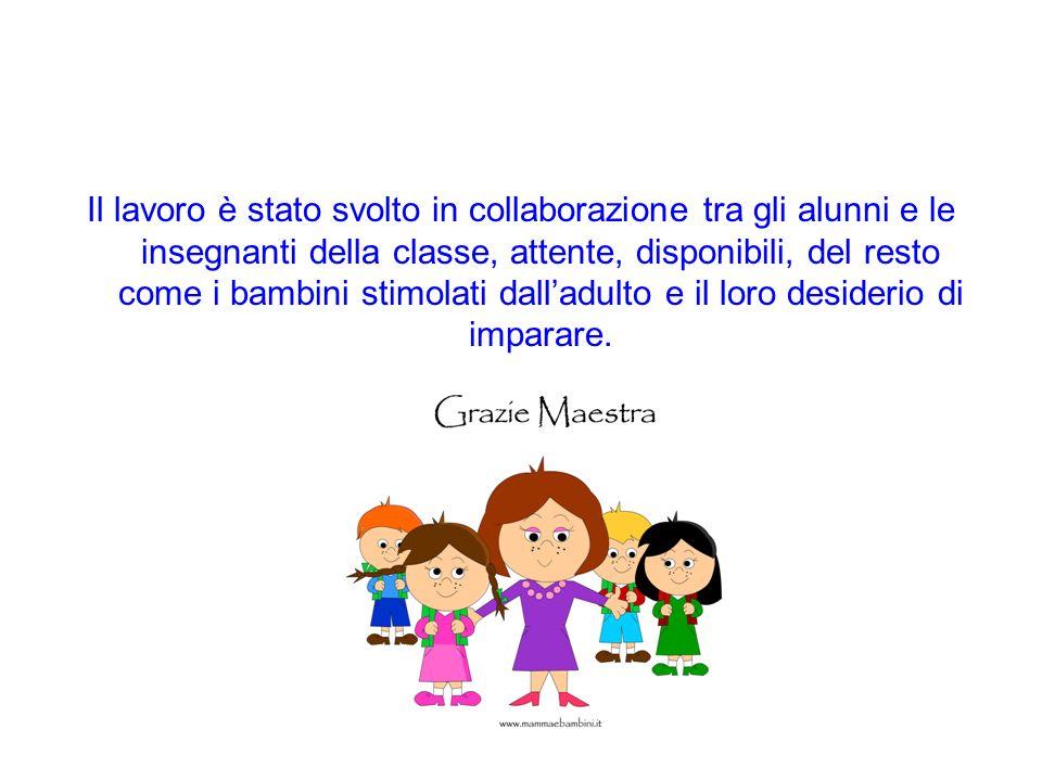Il lavoro è stato svolto in collaborazione tra gli alunni e le insegnanti della classe, attente, disponibili, del resto come i bambini stimolati dall'adulto e il loro desiderio di imparare.