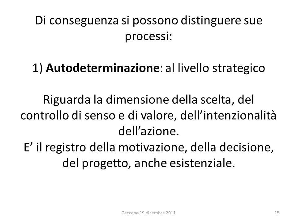 Di conseguenza si possono distinguere sue processi: 1) Autodeterminazione: al livello strategico Riguarda la dimensione della scelta, del controllo di senso e di valore, dell'intenzionalità dell'azione. E' il registro della motivazione, della decisione, del progetto, anche esistenziale.