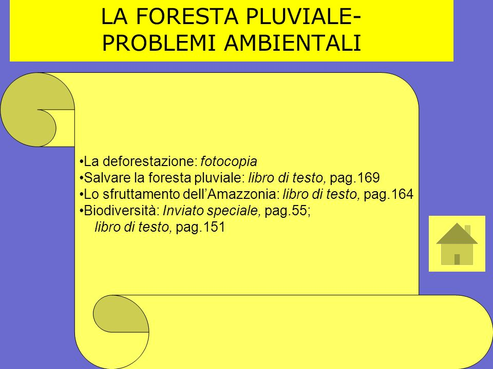 LA FORESTA PLUVIALE- PROBLEMI AMBIENTALI La deforestazione: fotocopia