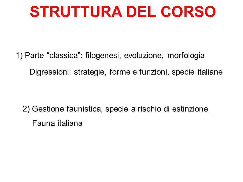 STRUTTURA DEL CORSO 1) Parte classica : filogenesi, evoluzione, morfologia. Digressioni: strategie, forme e funzioni, specie italiane.
