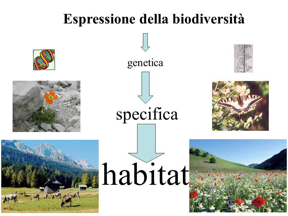 Espressione della biodiversità
