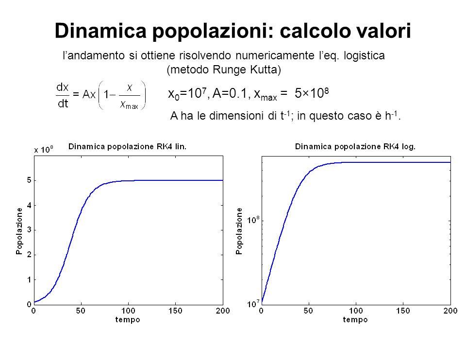 Dinamica popolazioni: calcolo valori