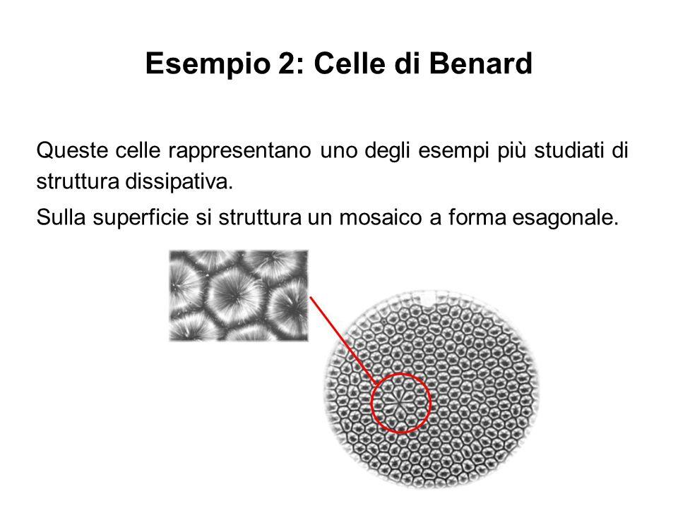 Esempio 2: Celle di Benard