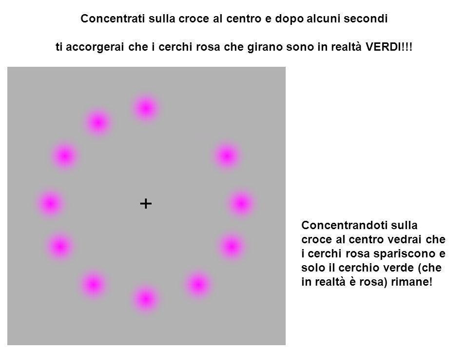 Concentrati sulla croce al centro e dopo alcuni secondi ti accorgerai che i cerchi rosa che girano sono in realtà VERDI!!!