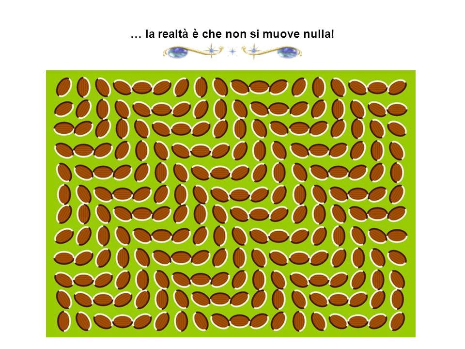 … la realtà è che non si muove nulla!