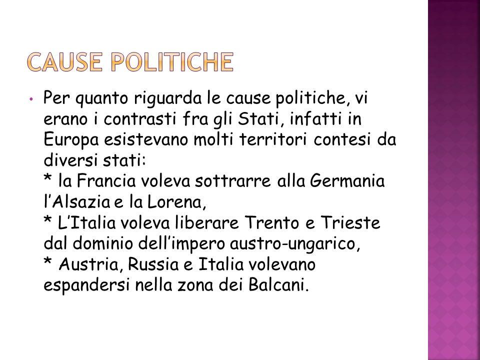 CAUSE POLITICHE