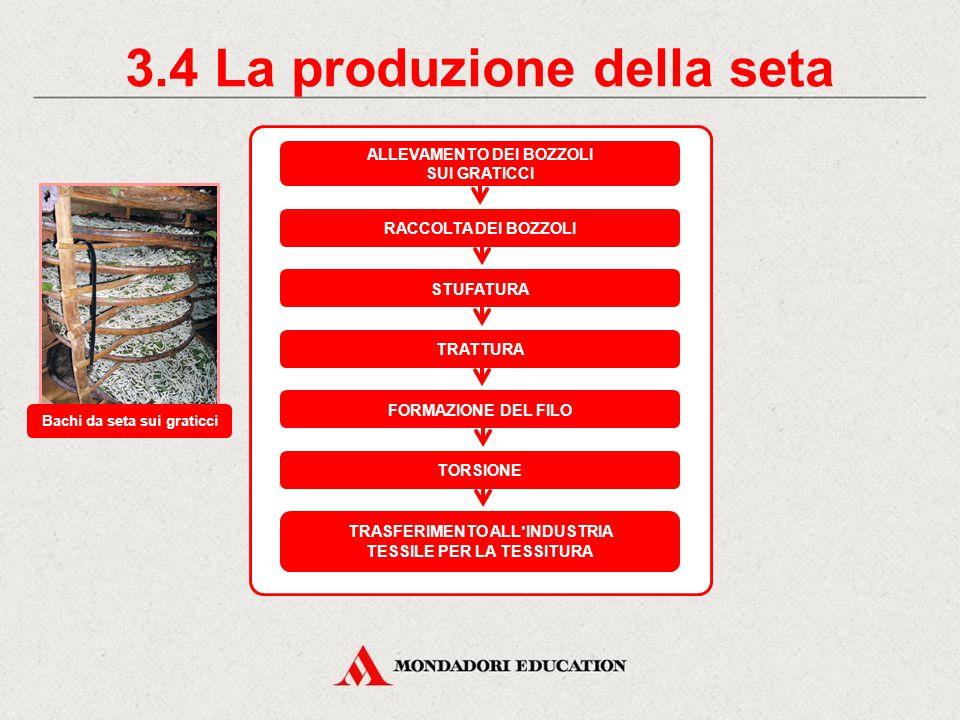 3.4 La produzione della seta