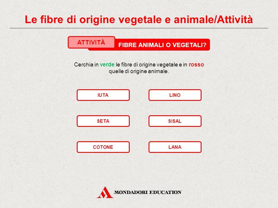 Le fibre di origine vegetale e animale/Attività