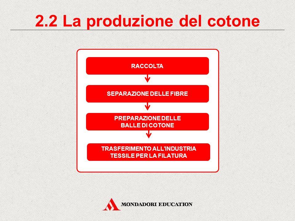 2.2 La produzione del cotone