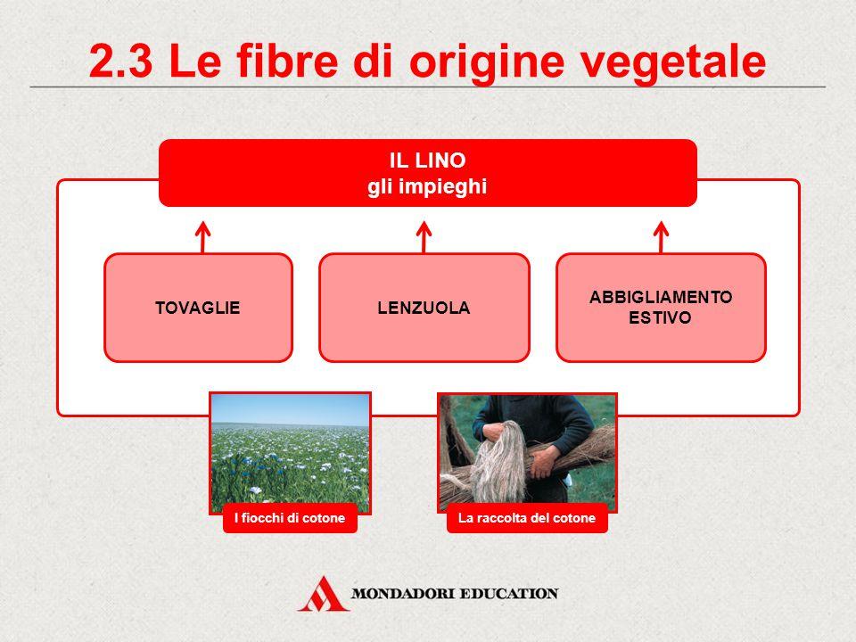 2.3 Le fibre di origine vegetale