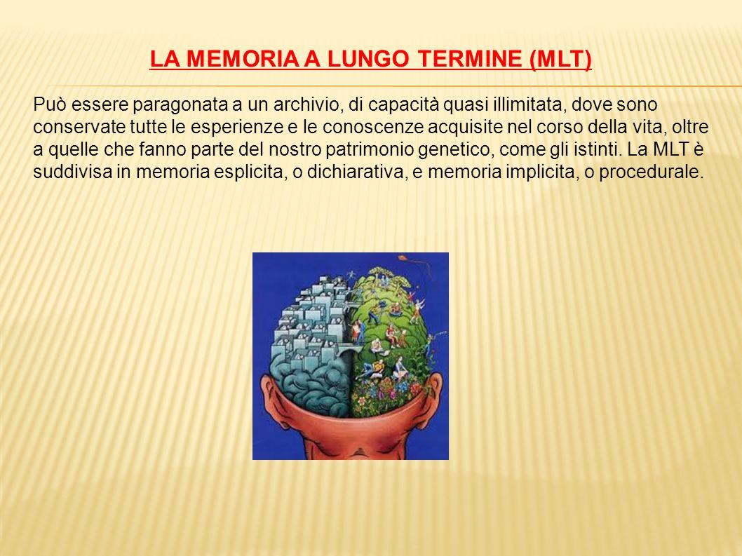 LA MEMORIA A LUNGO TERMINE (MLT)