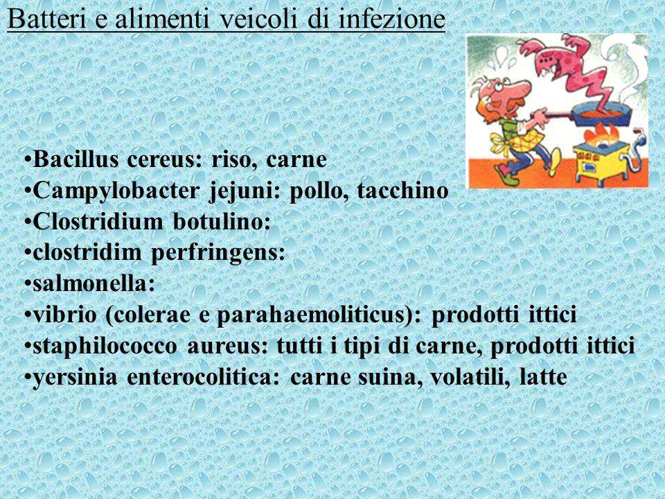 Batteri e alimenti veicoli di infezione