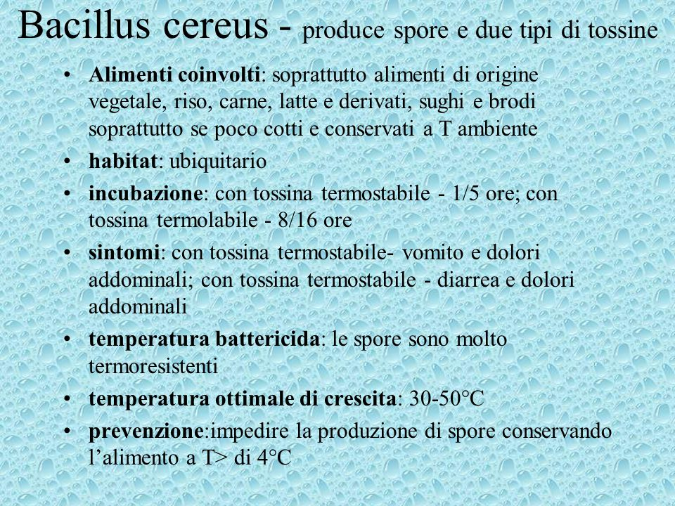 Bacillus cereus - produce spore e due tipi di tossine