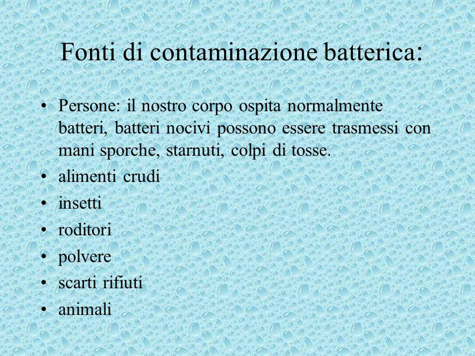 Fonti di contaminazione batterica: