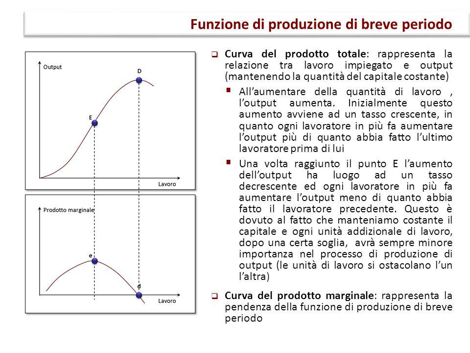 Funzione di produzione di breve periodo