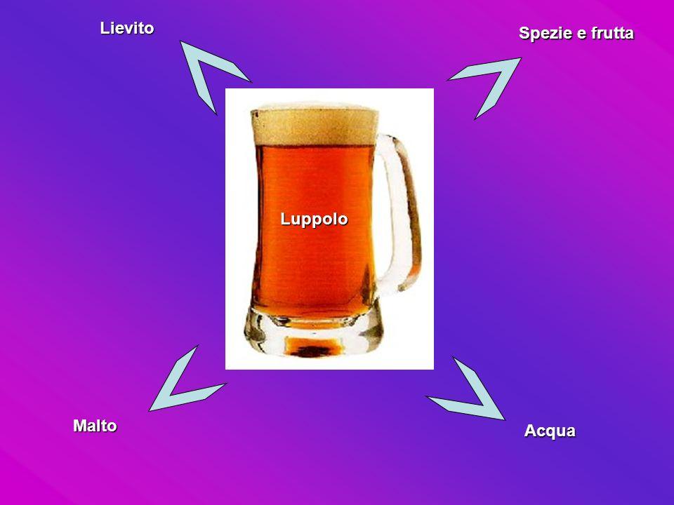 Acqua Malto Luppolo Lievito Spezie e frutta