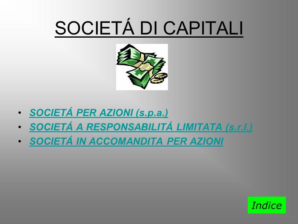 SOCIETÁ DI CAPITALI SOCIETÁ PER AZIONI (s.p.a.)