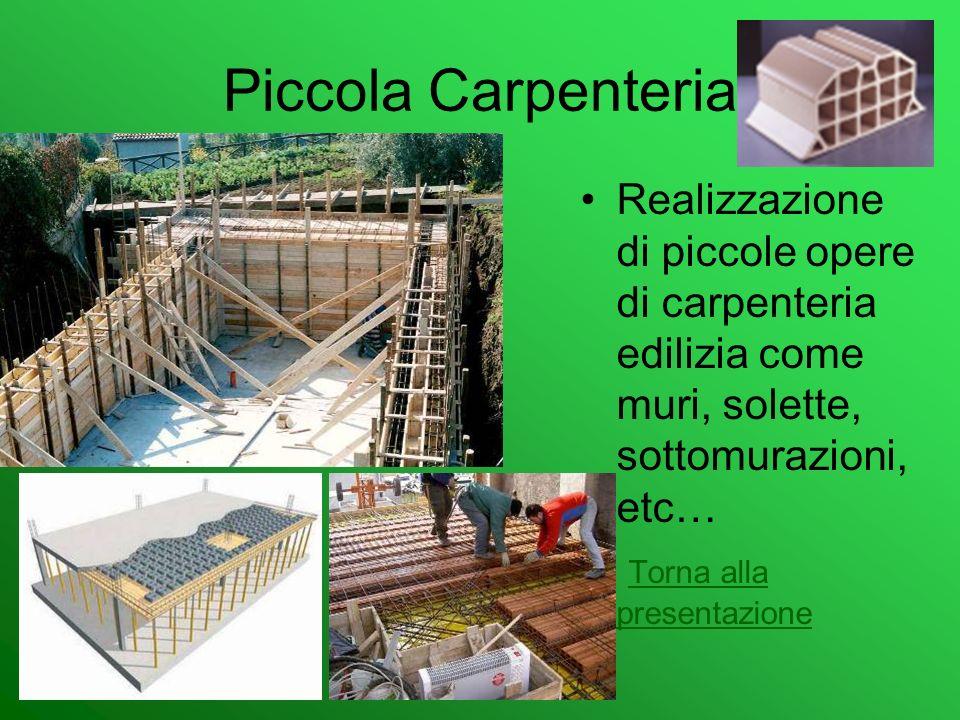 Piccola CarpenteriaRealizzazione di piccole opere di carpenteria edilizia come muri, solette, sottomurazioni, etc…