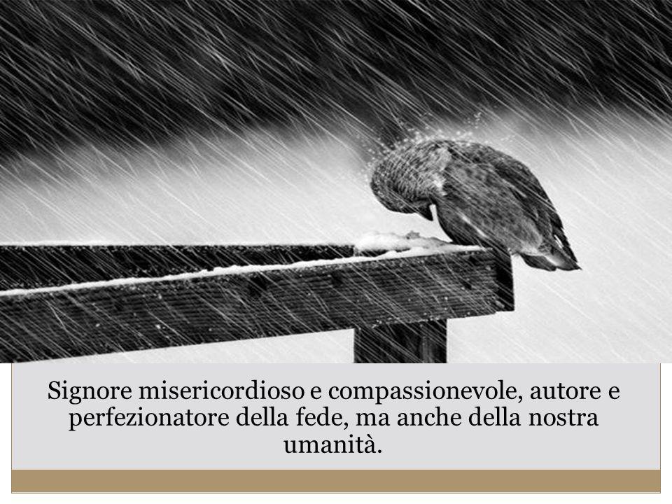 Signore misericordioso e compassionevole, autore e perfezionatore della fede, ma anche della nostra umanità.