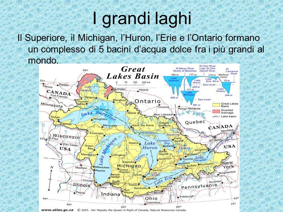 I grandi laghi Il Superiore, il Michigan, l'Huron, l'Erie e l'Ontario formano un complesso di 5 bacini d'acqua dolce fra i più grandi al mondo.