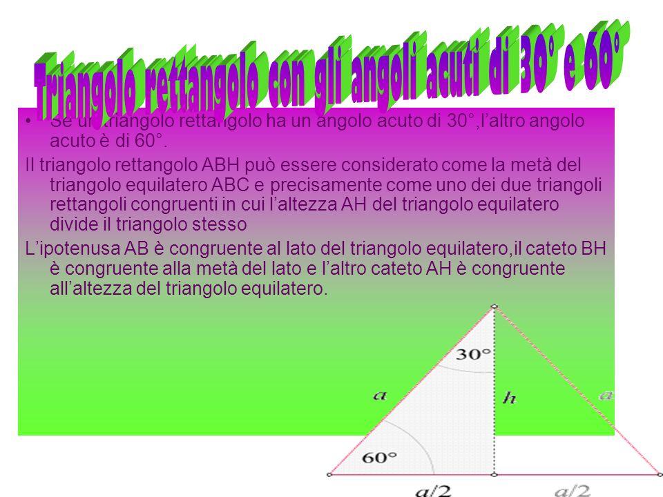 Triangolo rettangolo con gli angoli acuti di 30° e 60°