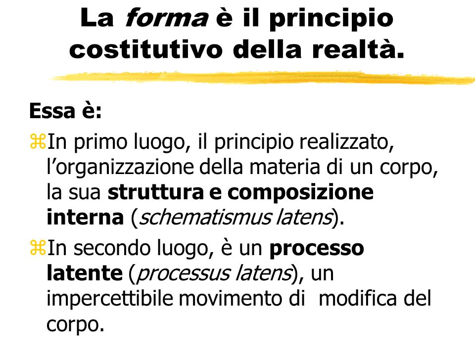 La forma è il principio costitutivo della realtà.