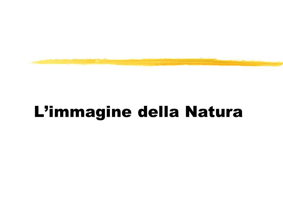 L'immagine della Natura