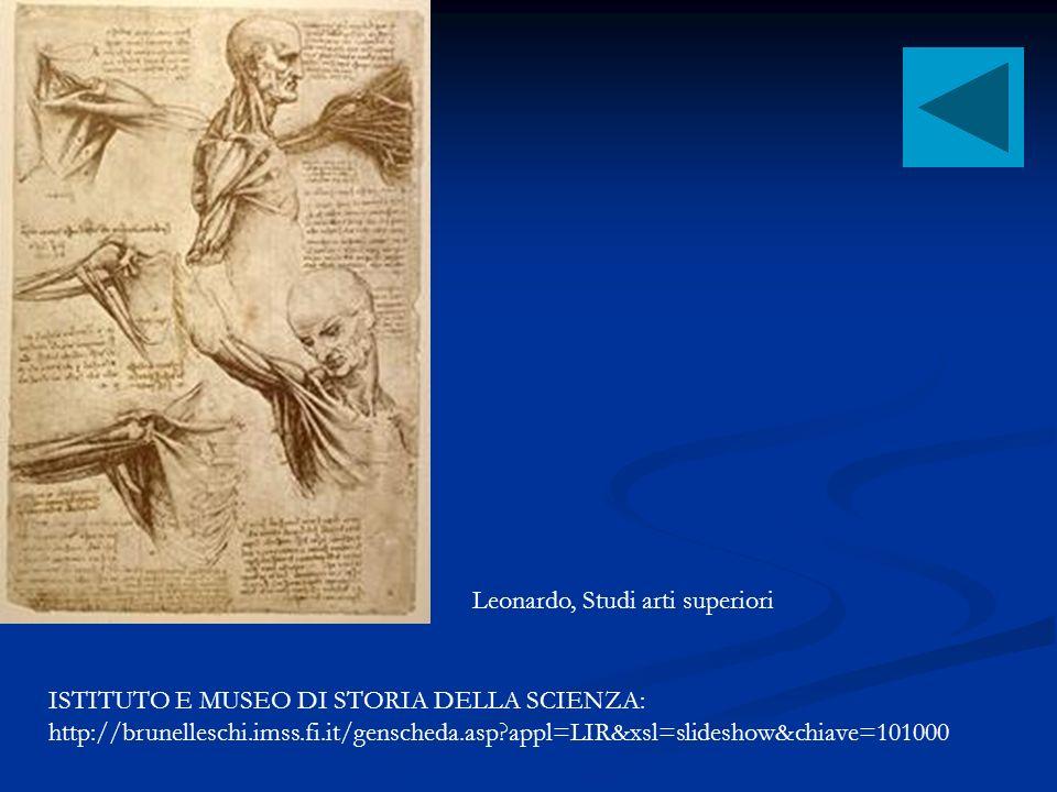 Leonardo, Studi arti superiori