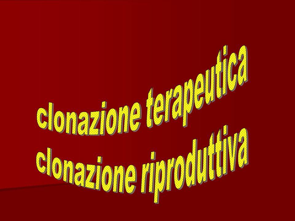 clonazione terapeutica clonazione riproduttiva