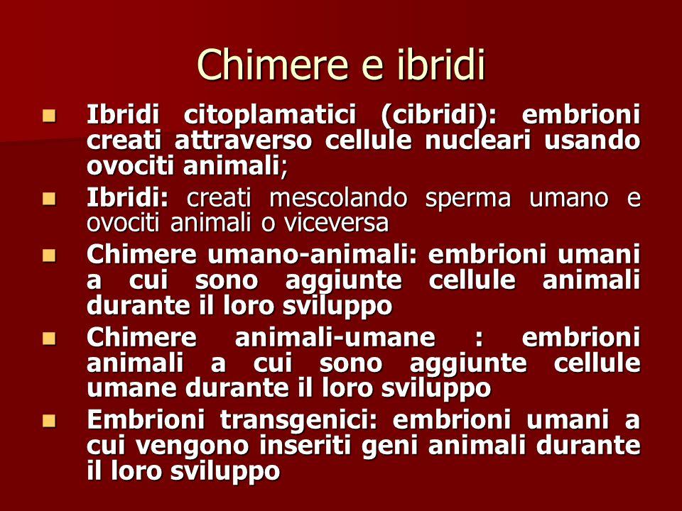 Chimere e ibridi Ibridi citoplamatici (cibridi): embrioni creati attraverso cellule nucleari usando ovociti animali;