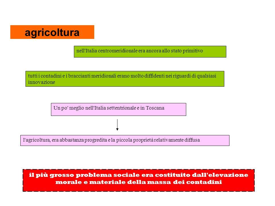 agricoltura nell Italia centromeridionale era ancora allo stato primitivo.