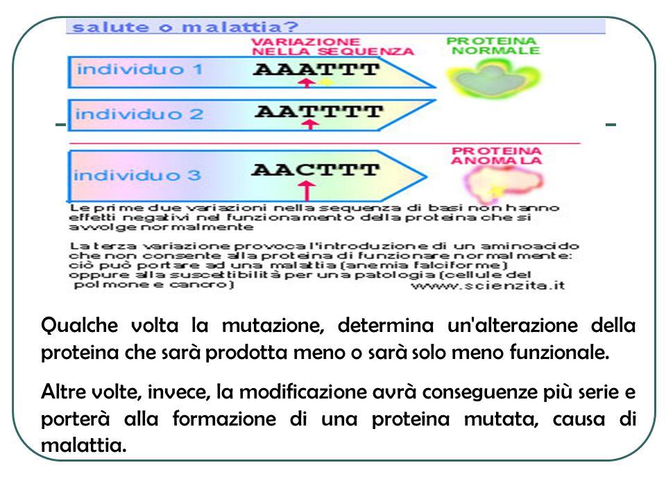 Qualche volta la mutazione, determina un alterazione della proteina che sarà prodotta meno o sarà solo meno funzionale.