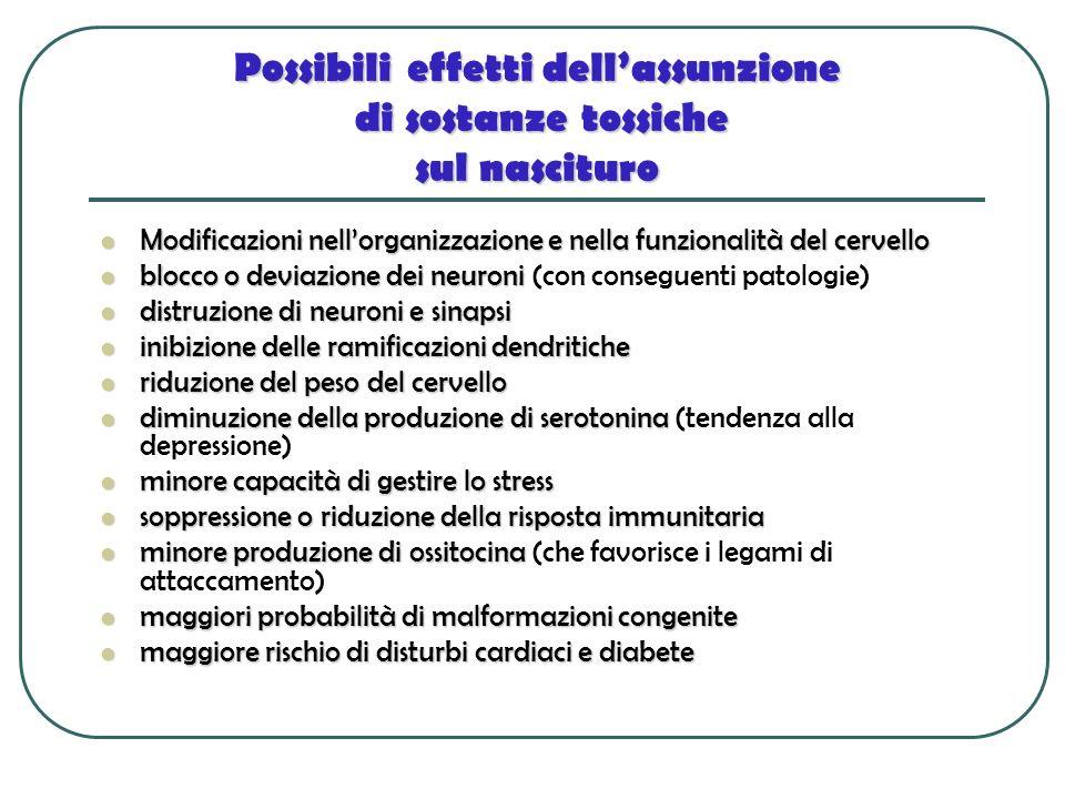 Possibili effetti dell'assunzione di sostanze tossiche sul nascituro
