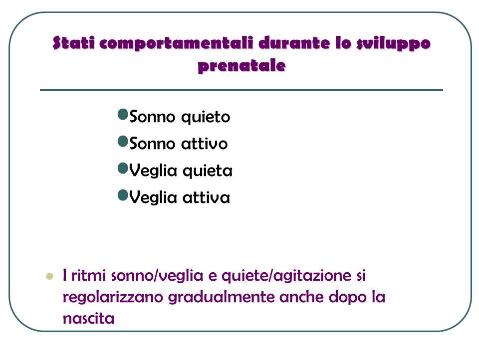 Stati comportamentali durante lo sviluppo prenatale