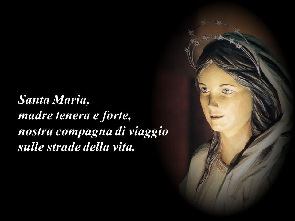 Santa Maria, madre tenera e forte, nostra compagna di viaggio sulle strade della vita.