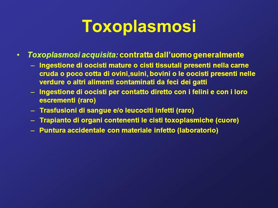 Toxoplasmosi Toxoplasmosi acquisita: contratta dall'uomo generalmente