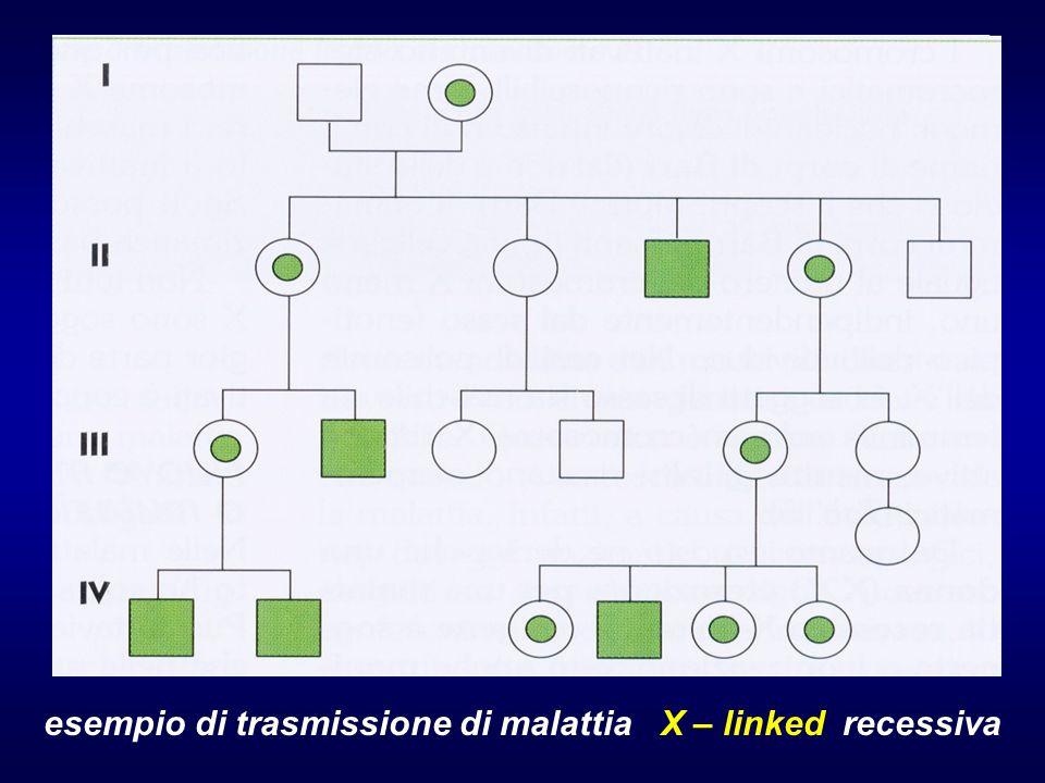 esempio di trasmissione di malattia X – linked recessiva