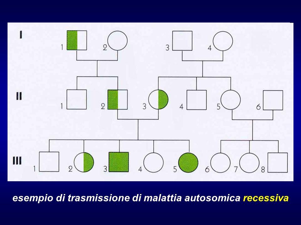 esempio di trasmissione di malattia autosomica recessiva