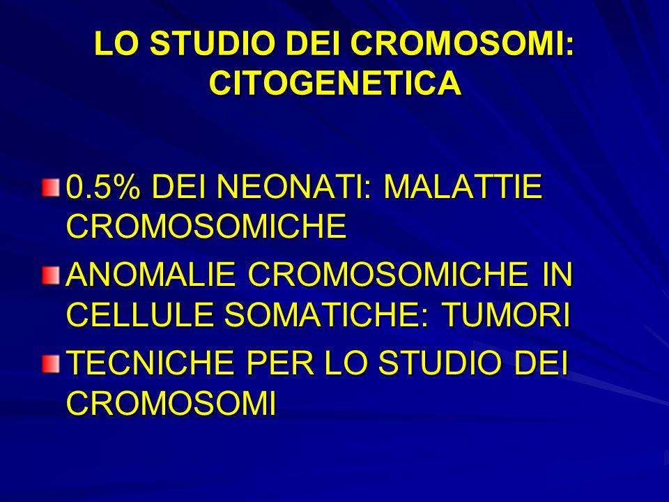 LO STUDIO DEI CROMOSOMI: CITOGENETICA
