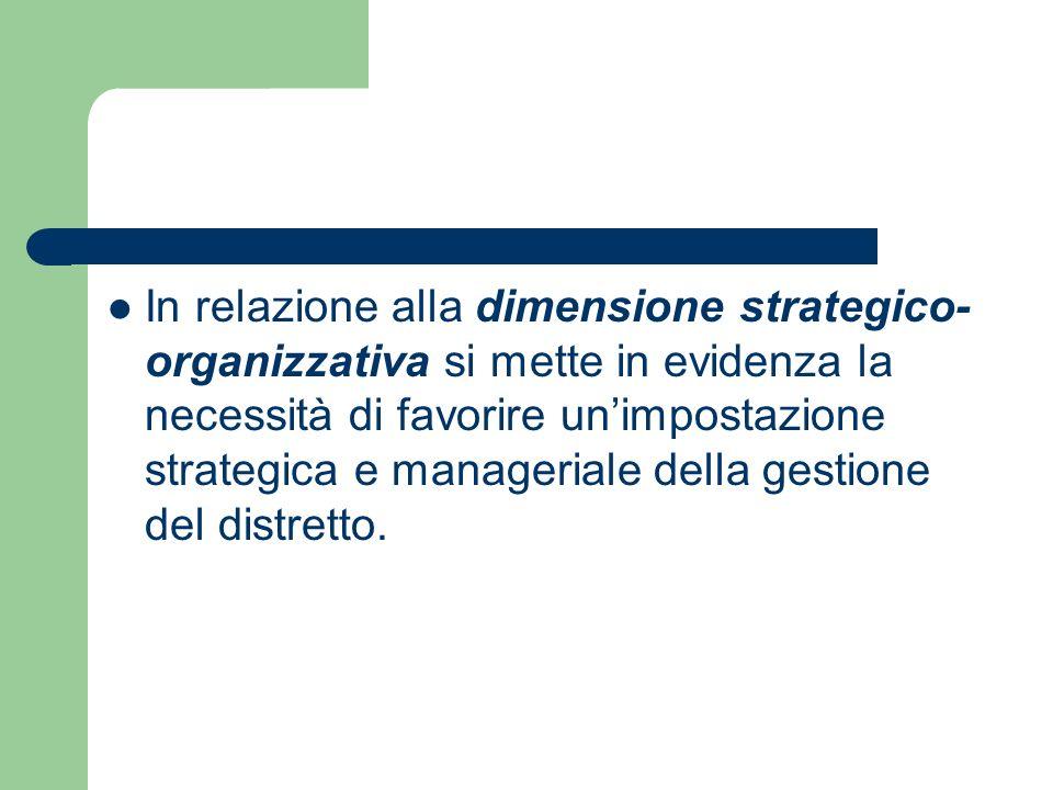 In relazione alla dimensione strategico-organizzativa si mette in evidenza la necessità di favorire un'impostazione strategica e manageriale della gestione del distretto.