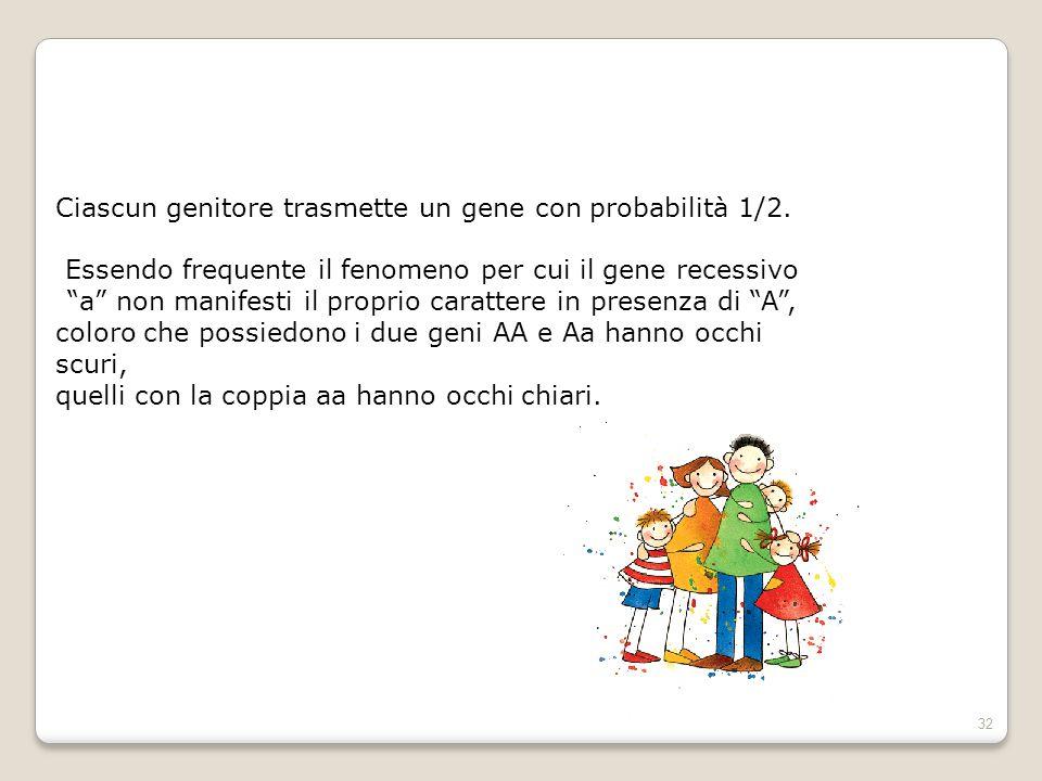 Ciascun genitore trasmette un gene con probabilità 1/2.
