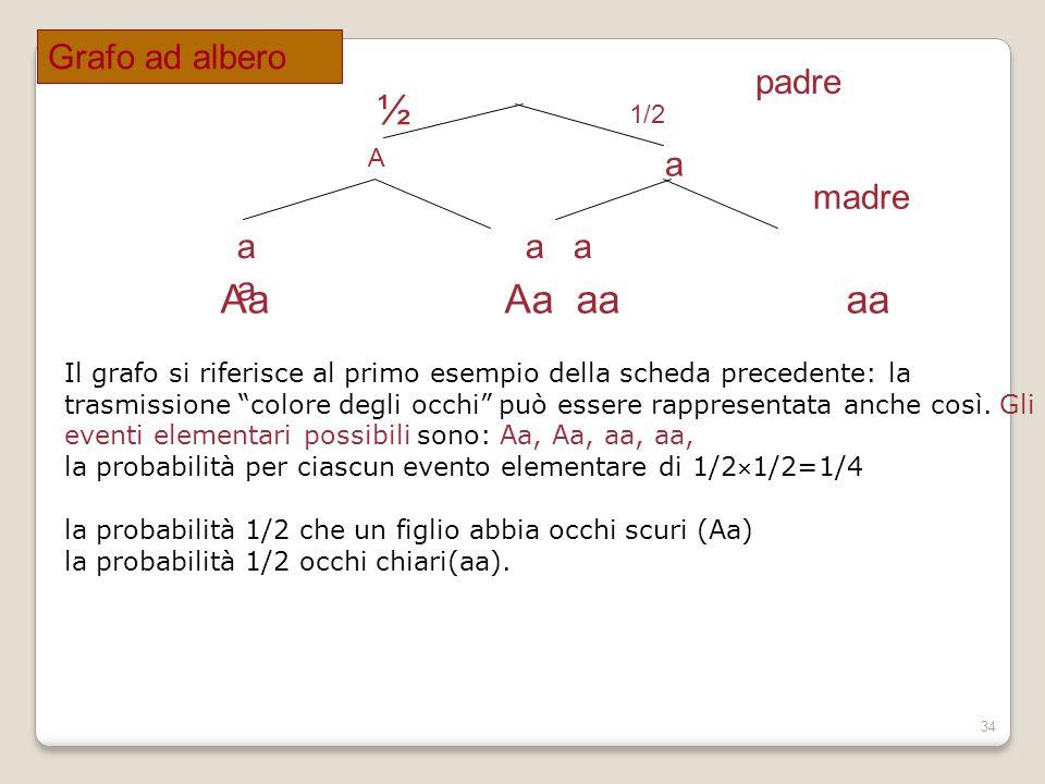 ½ 1/2 Aa Aa aa aa Grafo ad albero padre a madre a a a a A
