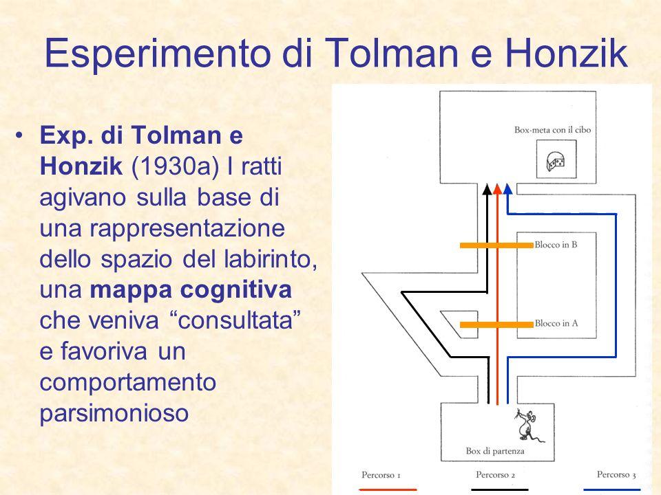 Esperimento di Tolman e Honzik