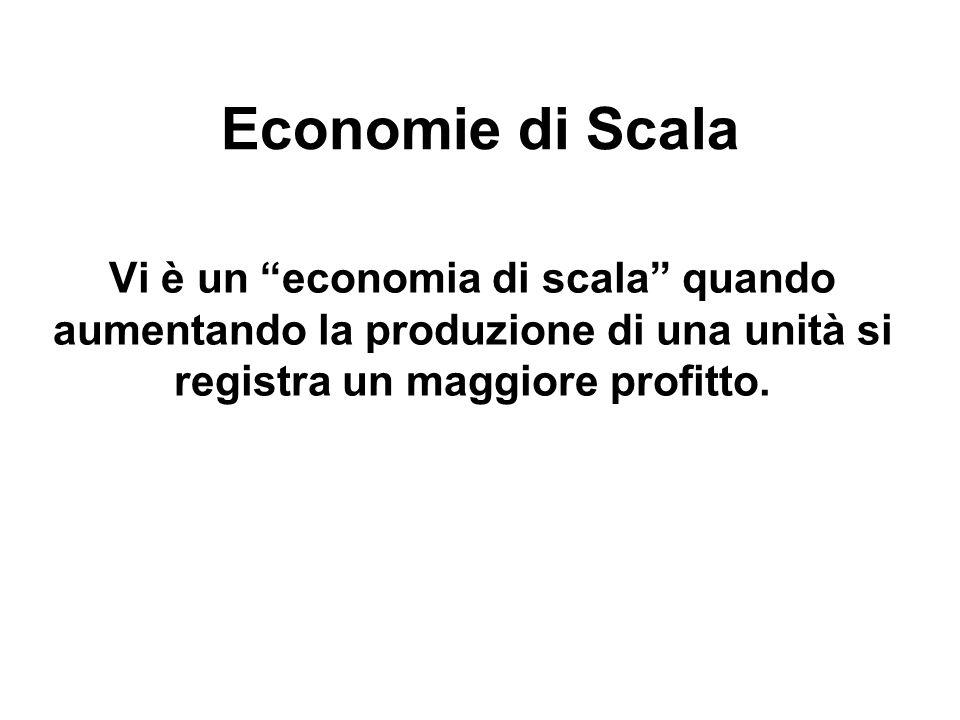 Economie di Scala Vi è un economia di scala quando aumentando la produzione di una unità si registra un maggiore profitto.