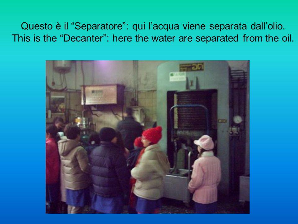 Questo è il Separatore : qui l'acqua viene separata dall'olio