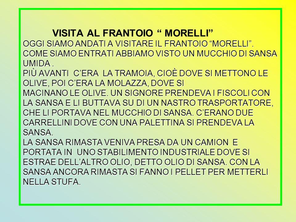 VISITA AL FRANTOIO MORELLI OGGI SIAMO ANDATI A VISITARE IL FRANTOIO MORELLI .