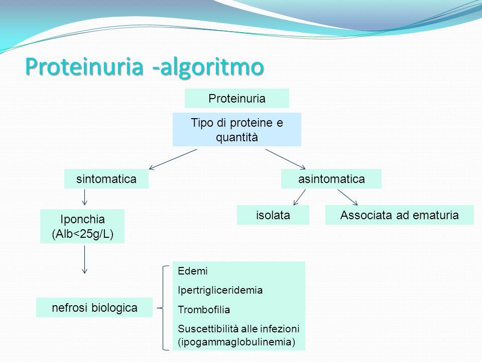 Proteinuria -algoritmo